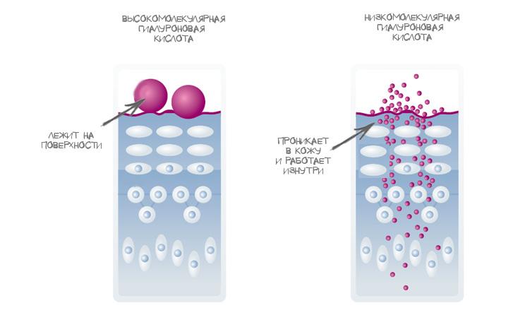 Низкомолекулярная гиалуроновая кислота TETe